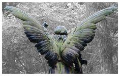 engel-von-hinten-f0deee7f-868c-4494-b279-de0075bc66d7.jpg (JPEG-Grafik, 1000×635 Pixel) - Skaliert (97%)