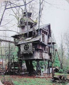 Redmond Treehouse - Redmond, Washington - Has taken 20 years to build so far.