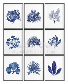 Sea Fern in Denim Blue Watercolor Prints by driftwoodinteriors, $37.50