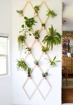 This trellis-patterned plant structure challenges the conventional indoor plante.This trellis-patterned plant structure challenges the conventional indoor plante.Home Wall Ideas