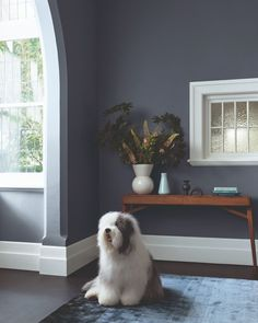 "Dulux Australia on Instagram: ""Behind the Style ⎮These living room walls in Dulux Signature create a naturally calming and tranquil space. Paired with the crisp Dulux…"" Dulux Australia, Dulux Paint Colours, Calming, Crisp, Walls, Living Room, Space, Create, Nature"