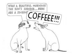 A beautiful morning = A morning with coffee! #MrCoffee #coffee #funny
