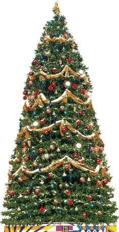 This high quality free PNG image without any background is about christmas tree, christmas and festival. Merry Christmas, Traditional Christmas Tree, Png Photo, Things To Come, Holiday Decor, Drawings, Crafts, Image, Design