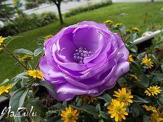 Vegetables, Rose, Flowers, Plants, Pink, Vegetable Recipes, Plant, Roses, Royal Icing Flowers