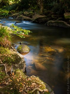 #Finistere #Bretagne #Odet au Stangala #Quimper (12 photos) © Paul Kerrien  http://toilapol.net