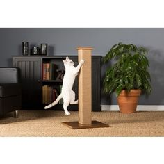 Prevue Pet Products Kitty Power Paws Cat Scratching Post | Overstock.com Shopping - The Best Deals on Cat Furniture