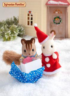 Quel farceur ! Le fils Ecureuil roux a déjà ouvert un de ses cadeaux !