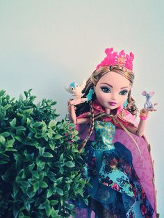 Ashlynn Ella Legacy Day | Flickr - Photo Sharing!