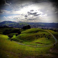 This is where I hike! Mulholland o' Moraga. - @marzeedotes on instagram