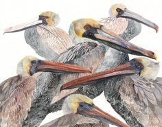 Brown Pelicans Large Archival Print by unitedthread on Etsy, via Etsy.