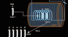 """DNA Teleporting Itself """"Nobel Prize-winning scientist Luc Montagnier, previously known for his work on HIV and AIDS, claims to have demonstrated that DNA can be generated from its teleported """"quantum imprint."""""""