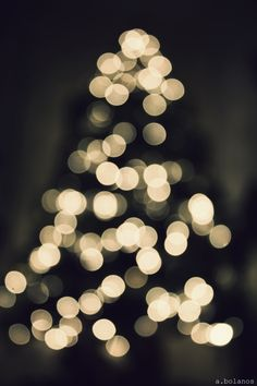colors of life — fuckyeahstreetlights: christmas tree, oh...