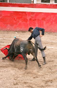 Ana y la familia de Marco fue un evento nombre la corrida de toros. Ana no gusto pero la familia de Marco gusto.