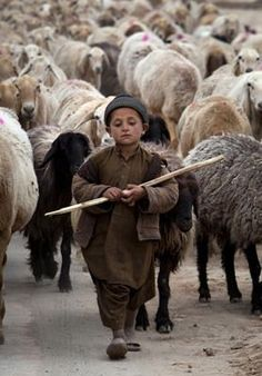 brown - child with sheep - A young Pakistani shepherd escorts his herd in suburbs of Islamabad, Pakistan (AP Photo/B. We Are The World, Small World, People Around The World, Wonders Of The World, Around The Worlds, Kind Photo, Foto Portrait, A Course In Miracles, Ansel Adams
