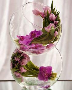 flores dentro de aquários - Pesquisa Google