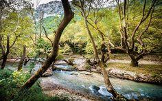 acheron #river #greece #500px #nature #photoshoot #photographer #canon5d #canon #canon5dmarkiii...