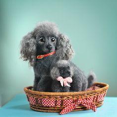 OOAK needle felted toy-portrait sculpture dog by NataliaKravtsova Cute Wild Animals, Felt Animals, Border Terrier, Yorkshire Terrier, Jack Russell, Teddy Bear Dog, Dog Artist, Needle Felting Tutorials, Felt Dogs