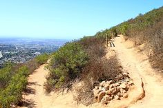 Cowles mountain in san deigo