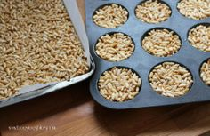 LTM (Little Thermomix Munchies) A great gluten free lunch box snack Gluten Free Cooking, Gluten Free Recipes, Thermal Cooking, Snack Recipes, Snacks, Granola Bars, Nut Free, Nom Nom, Good Food