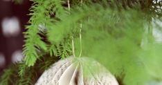 Min blogg handlar om inredning, trädgård och bakning. Blogg, Dandelion, Flowers, Plants, Christmas, Tips, Yule, Navidad, Dandelions