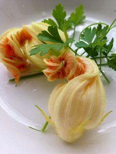 Vegan Dishes - Grand Gourmet Pictures - Claudia's Secrets