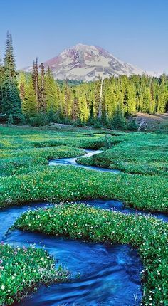 THREE SISTERS WILDERNESS, OREGON, USA #by www.point-central.pinthouses.com . + www.pinterest.com/pin/319544536039008399