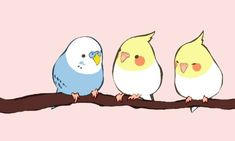 Chubby little birds Cute Kawaii Animals, Cute Animal Drawings Kawaii, Kawaii Art, Kawaii Drawings, Funny Birds, Cute Birds, Bird Drawings, Cute Drawings, Vogel Clipart