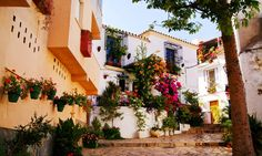 Tryp Estepona Valle Romano Deal of the Day | Groupon