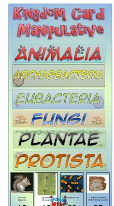 The Kingdom Taxonomic Card Sort Manipulative (science) serves as a quick formative assessment over the 6 Kingdoms. Depending on how you integrate it into your lesson, the activity should take no more than 10 minutes max. #biology