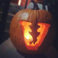 Vandy pumpkin - Photo by @eelysiaa