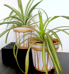 Painting Plastic Pots - How To Jazz Up Your Planters
