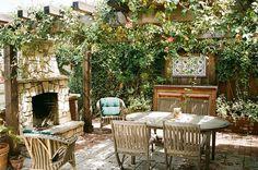 Вьющиеся растения для сада: яркое украшение усадьбы