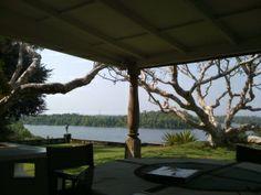 View from terrace - Lunuganga