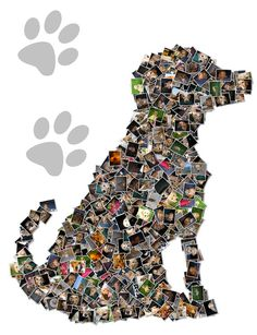 Custom Canvas Mosaic Collage Picture Gift Pet by Studiojones1, $139.00