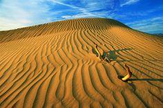 Jour 6 :   Traversée de la Vallée de la Mort.  Death Valley National Park à Death Valley, CA