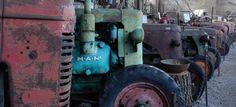 Old tractors (plus an intruder :D )