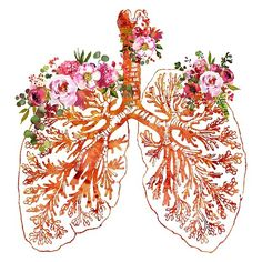Check out this awesome 'Anatomical+Lungs' design on Medical Wallpaper, Nurse Art, Heart Illustration, Medical Art, Anatomy Art, Lunges, Art Forms, Watercolor Art, Art Drawings