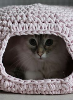 Crochet cat basket....NO I'm not making this....this would officially make me a crazy cat lady!!!