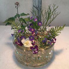 Studio Apartment, Glass Vase, Flowers, Beautiful, Home Decor, Centerpieces, Mesas, Studio Apt, Decoration Home
