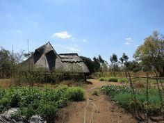Malawi Landscape Architecture