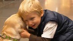 Nick News: Service Dogs: Training a Service Dog
