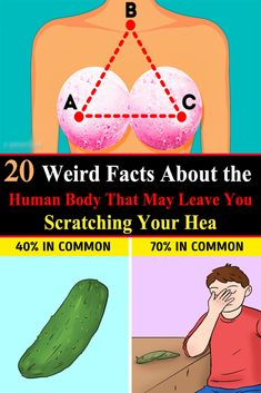 20 weird facts about the human body that may leave you scratching your head Wierd Facts, Fun Facts, Facts About Humans, Your Head, Bath And Beyond Coupon, Healthy Snacks For Diabetics, Health Facts, Our Body, Nature Pictures