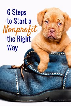 6 Steps to Start a Nonprofit the Right Way Nonprofit - Nonprofit Information