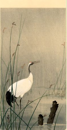 """""""Crane in small water"""" by Ohara Koson"""