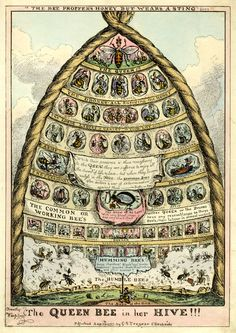 The interior of a hive with a queen bee at the top and lesser bees in hierarchical order arranged in descending circles below her, with the 'humble bees' at the base of the hive 29 August 1837 Hand-coloured etching I Love Bees, Birds And The Bees, Humble Bee, Bee Skep, Bee Hives, Buzz Bee, Vintage Bee, Vintage Ephemera, Bee Art
