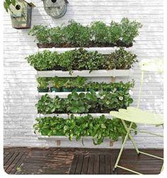 How to Make a Rain Gutter Garden