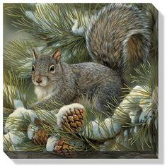 """GRAY SQUIRREL WRAPPED CANVAS ART ~ by Rosemary Millette  The Wrapped Canvas Collection offers the look and feel of an original painting at a fraction of the cost. Arrives ready to hang, this unframed canvas bears a clean, contemporary feel. 10-1/2""""W x 10-1/2""""H x 1-1/8""""D."""