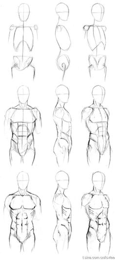 Sketching Of Human Body Step By Step - Basic male torso tutorial by timflanagan male drawing refrences drawing tips drawings body drawing How to draw a person whole body torso Human body. Human Figure Drawing, Figure Drawing Reference, Art Reference Poses, Anatomy Reference, Human Body Drawing, Human Sketch, Figure Drawing Tutorial, Human Body Art, Body Reference