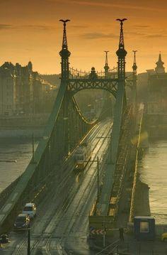 Liberty Bridge, Budapest    Hungary