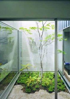 실내정원이 아름다운 공간인테리어 : 네이버 포스트